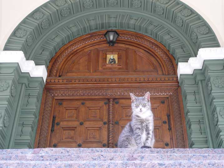 Cat guarding the entrance of the Alexander Nevsky cathedral