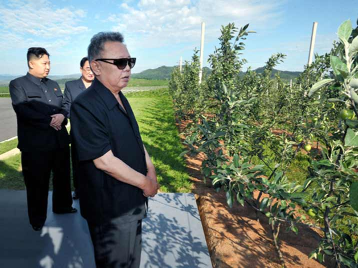 Kim Jong Il looking at apples on a farm