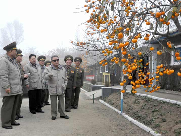 Kim Jong Il looking at oranges that grow on an Army base