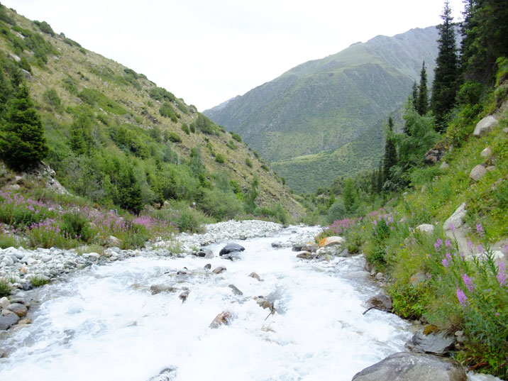 The Adygene River gets its water from melted ice from the Panfilov Glacier
