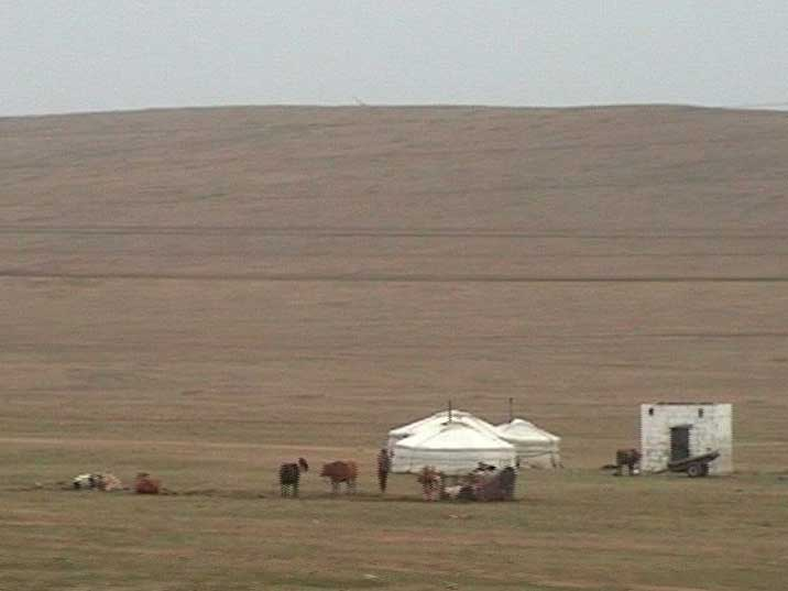 Ger tents seen from the train when we woke up in Mongolia