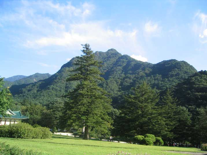 The lush green surroundings of Mount Myohyang in North Korea