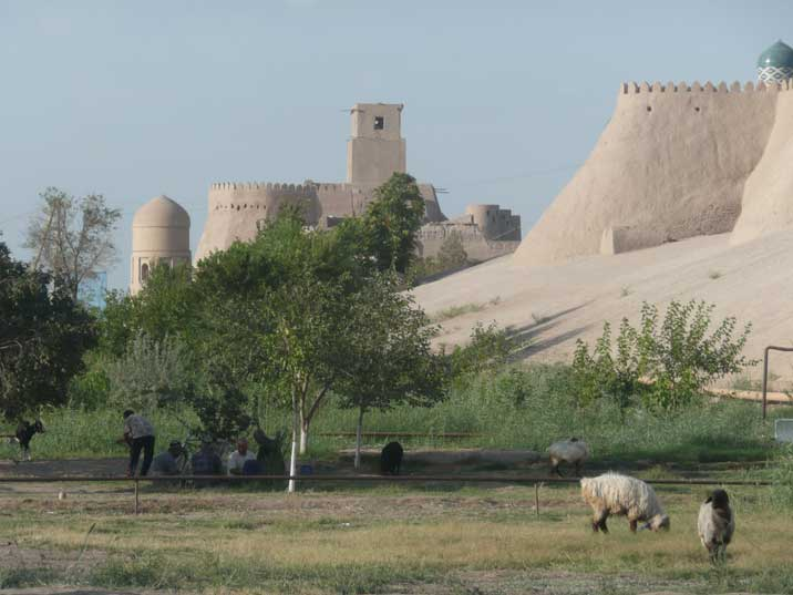 Sheep herders enjoying the shadow near the Khiva city walls