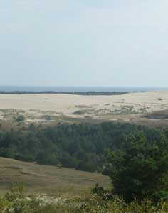 Sand dunes of the Curonian split constantly changing in shape